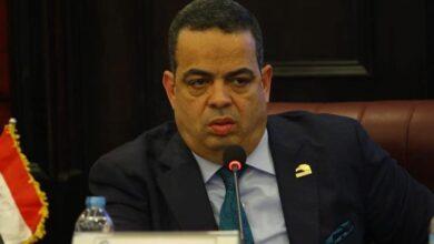 صورة النائب عصام هلال عفيفي:  ارفض بيان وزير التعليم جملة وتفصيلا